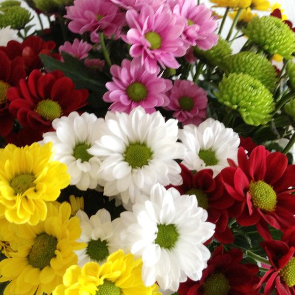 Bloemen in huis; santini