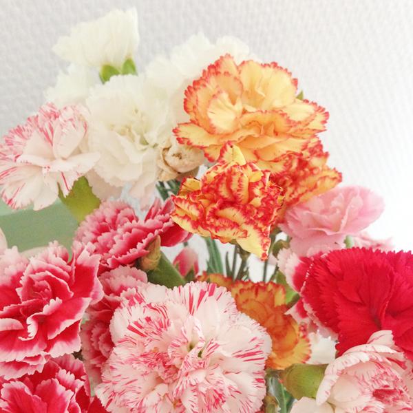 Bloemen in huis; trosanjers